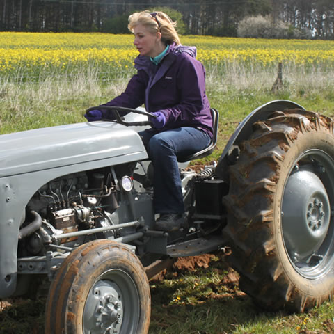 Tractor Driving at A Day in the Country, Oxfordshire